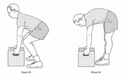 Illustrates squat lift